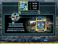 paytable slot online untamed wolf pack